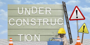 "DIY Website builders image of pug with hard hat and ""under construction"" sign"